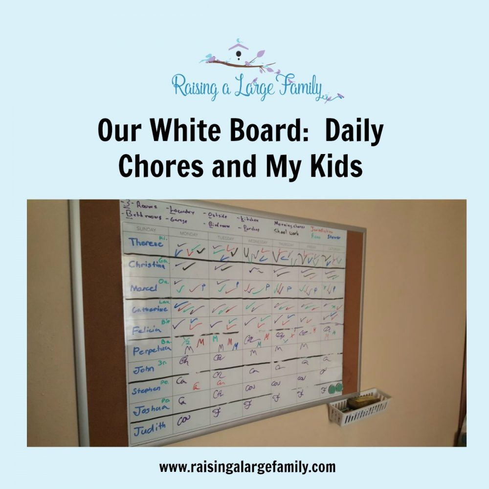 We ask a lot of our children.  We ask them to do their chores, jurisdictions, piano practice, etc.  With so many children running around it's easy for one to slip through the cracks and not complete one of their responsibilities.  How do we make sure this doesn't happen?  Introducing our white board.