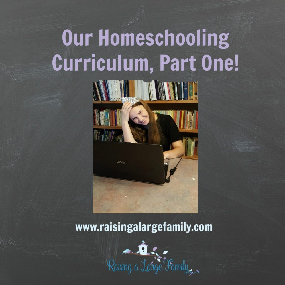 Our Homeschooling Curriculum, Part One