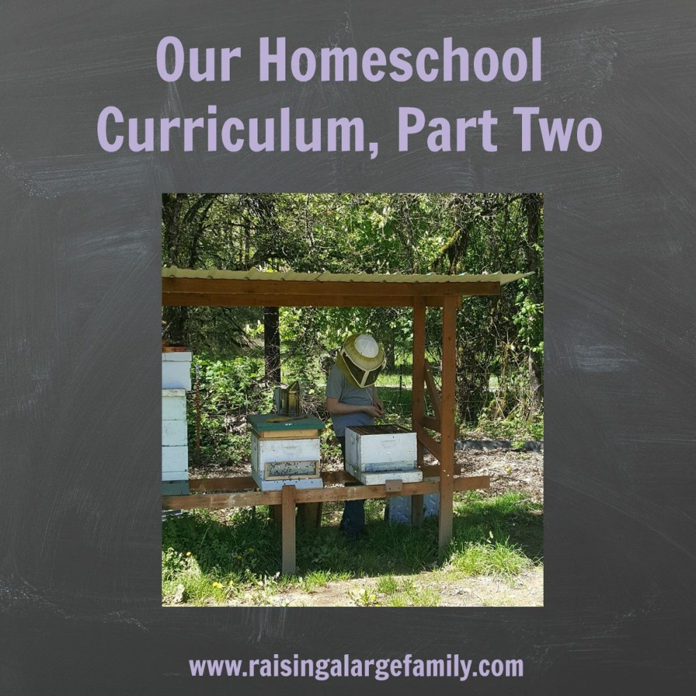Our Homeschooling Curriculum, Part Two