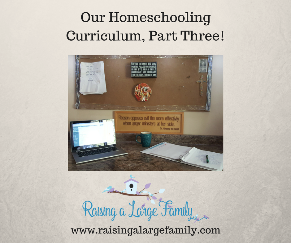 The standard education every child is expected to receive is the three R's; Reading, Writing and Arithmetic.  I approach this part of our homeschooling very simplistically, like all the other subjects my children are 'taught'.