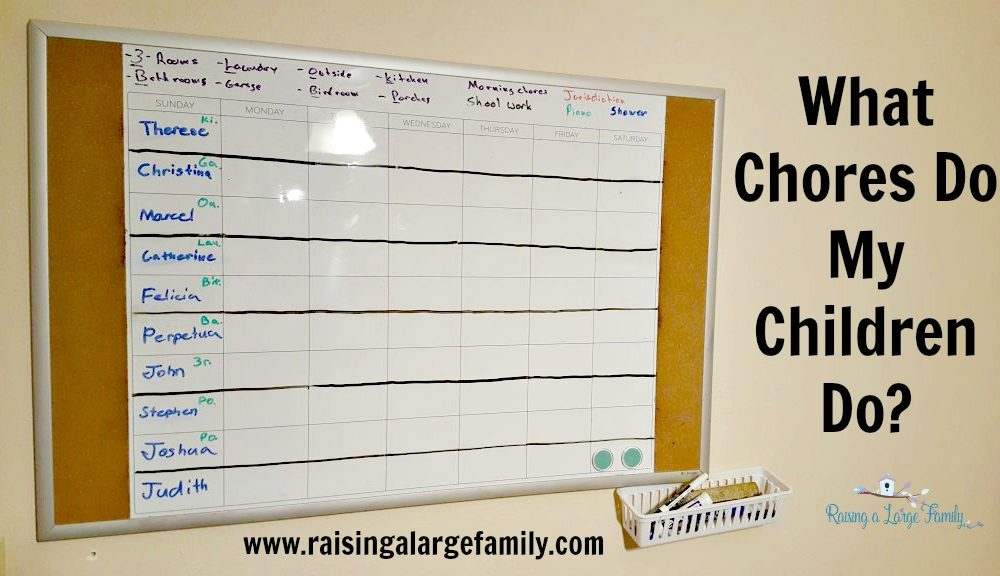 What Chores Do My Children Do?